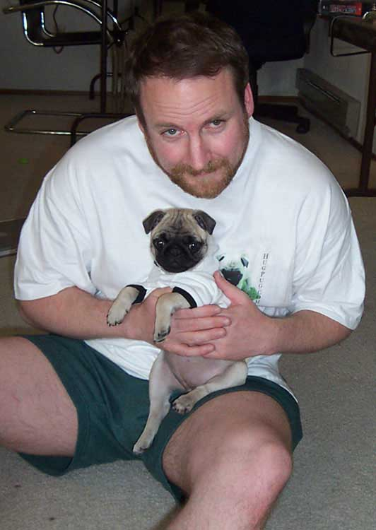Little Sheba the Hug Pug Photo 00152